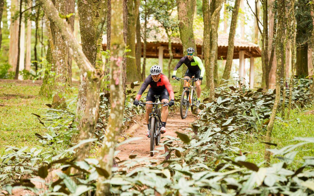Modalidades de ciclismo  conheça as principais e descubra qual faz o seu  estilo 918b227508